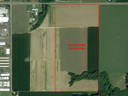 56 +/- acres Willamette Soil (Class 1) per NRCS