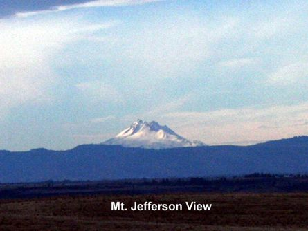 Mt. Jefferson View