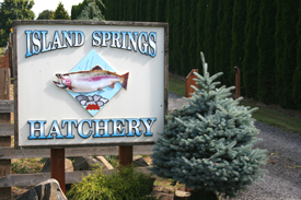 Island Springs Hatchery