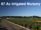 87 Acre Irrigated Nursery for sale