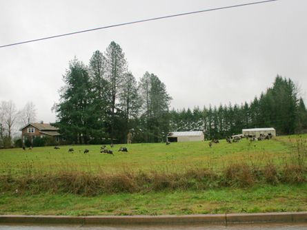 5 Acres with Home, Barn, and Shed in the City Limits of McMinnville