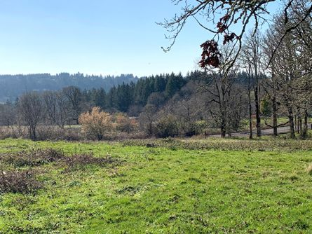 14 +/-  Acres near Scotts Mills, OR