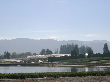 Picturesque Oregon Land for Sale- Greenhouses and Reservoir on Kansas City Farm