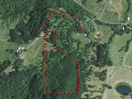 Yamhill County Oregon Land for Sale
