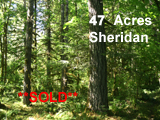 47 Acres Polk County Oregon Land for sale
