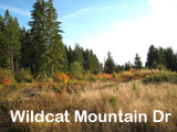 42 Acres Sandy Oregon Land for Sale