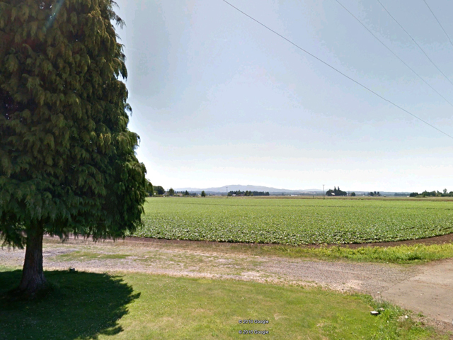 Irrigated Willamette Valley Farmland