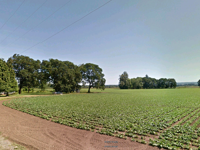 30 Acre Irrigated Farm