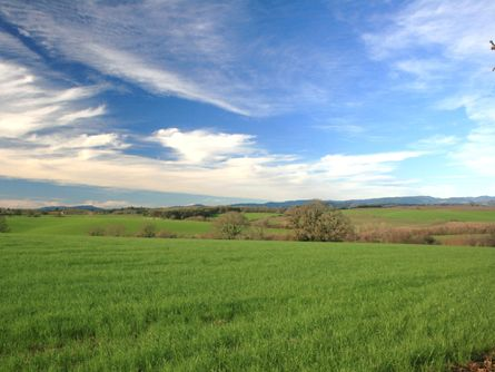 >Beautiful Willamette Valley Acreage