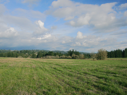 38+ Acres Wilsonville Oregon Land for Sale