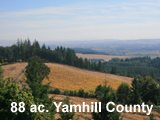 Yamhill County Vineyard Land For Sale